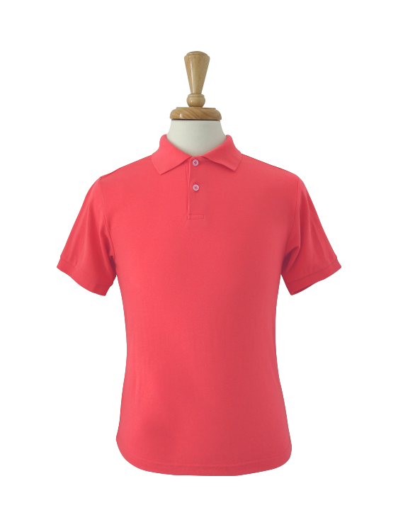 plain polo shirt charles kirk